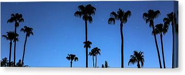 Blue Tropical Night Panorama Canvas Print by James BO Insogna