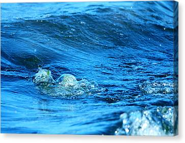 Blue Water Canvas Print by Heike Hultsch