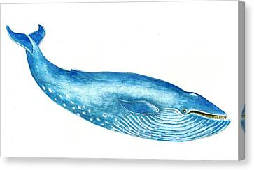 Blue Whale Canvas Print by Michael Vigliotti