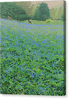 Bluebell Hill Canvas Print by Malcolm Warrilow