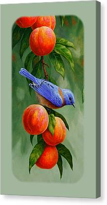 Bluebird And Peach Tree Iphone Case Canvas Print by Crista Forest