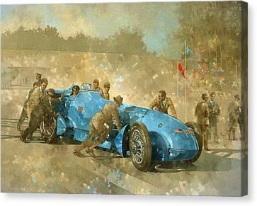 Bluebird Canvas Print by Peter Miller