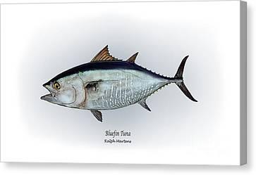 Bluefin Tuna Canvas Print by Ralph Martens