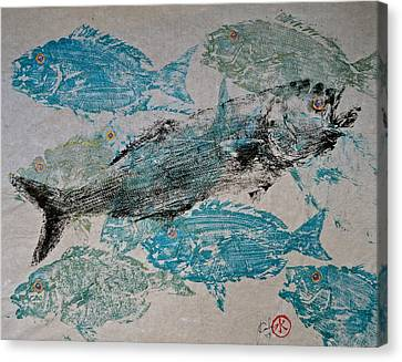 Bluefish Delight - Lunchtime  Canvas Print by Jeffrey Canha