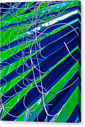 Bluegreen Palm Fun Canvas Print by Gwyn Newcombe