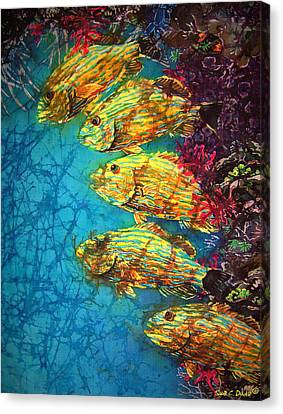 Bluestriped Grunts Canvas Print by Sue Duda