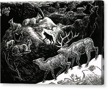 Bobcat Among Elk Canvas Print by Dawn Senior-Trask