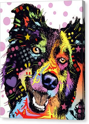 Border Collie Canvas Print by Dean Russo