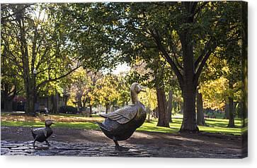 Boston Public Garden Make Way For Ducklings Canvas Print by Toby McGuire