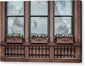 Boston Strong Window Boxes Canvas Print by Edward Fielding