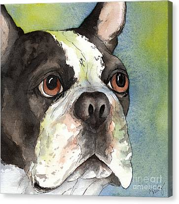 Boston Terrier Close Up Canvas Print by Cherilynn Wood