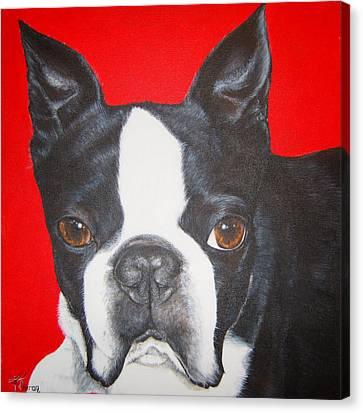 Boston Terrier Canvas Print by Keran Sunaski Gilmore