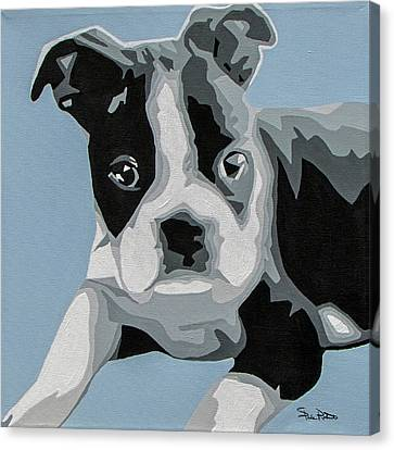 Boston Terrier Canvas Print by Slade Roberts