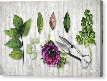 Botanica I Botanical Flower, Leaf And Berry Nature Study Canvas Print by Tina Lavoie