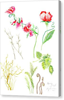 Botanical Nature - Spring Study 1 Canvas Print by Audrey Jeanne Roberts