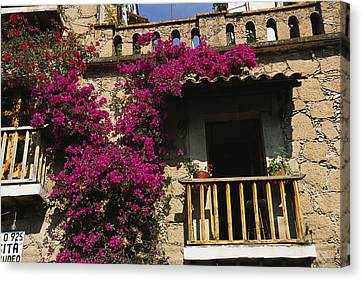 Bougainvillea Flowers On The Balcony Canvas Print by Gina Martin