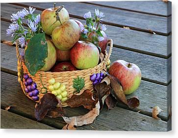 Bountiful Harvest Canvas Print by Rick Morgan