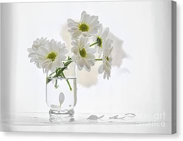 Bouquet White Flowers Canvas Print by larisa Fedotova