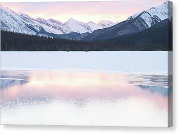 Bow Valley In Kananaskis Country Canvas Print by Carol Cottrell