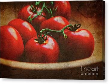 Bowl Of Tomatoes Canvas Print by Toni Hopper