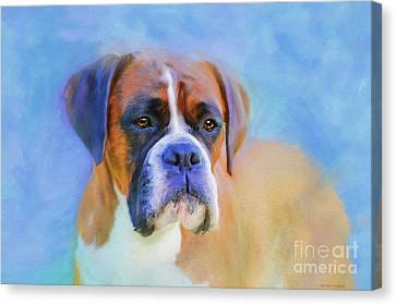Boxer Blues Canvas Print by Michelle Wrighton