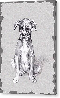 Boxer Pup Canvas Print by Peggy Wilson