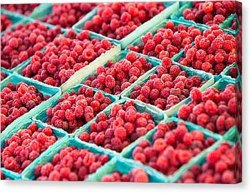 Boxes Of Raspberries Canvas Print by Todd Klassy