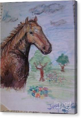Brandy The Horse Canvas Print by Jamey Balester