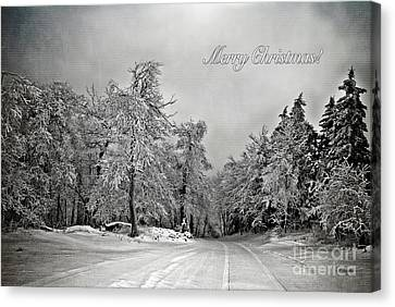 Break In The Storm Christmas Card Canvas Print by Lois Bryan