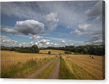 British Agriculture Canvas Print by Chris Fletcher