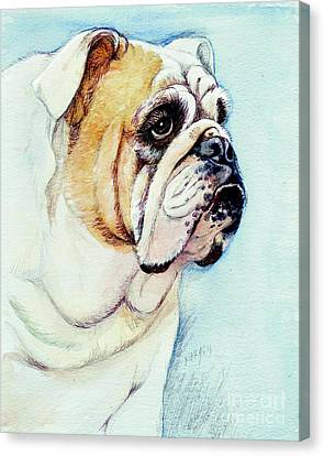 British Bulldog Canvas Print by Morgan Fitzsimons