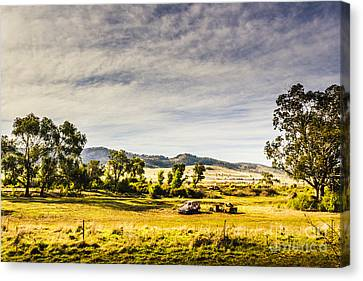 Broken Down Cars On Rural Acreage Canvas Print by Jorgo Photography - Wall Art Gallery