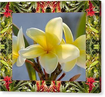 Bromeliad Plumeria Canvas Print by Bell And Todd
