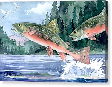 Brook Trout Canvas Print by Paul Brent