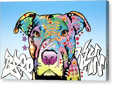 Brooklyn Pit Bull 2 Canvas Print by Dean Russo