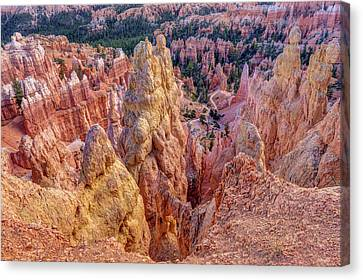 Bryce Canyon Hoodoo Landscape Canvas Print by Pierre Leclerc Photography