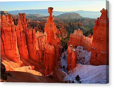 Bryce Canyon's Thor's Hammer Canvas Print by Pierre Leclerc Photography