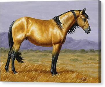 Buckskin Mustang Stallion Canvas Print by Crista Forest