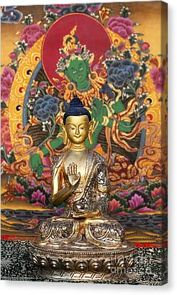 Buddha Blessing Canvas Print by Tim Gainey