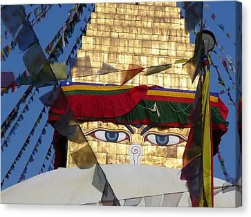 Buddha's  Eyes Canvas Print by Dagmar Ceki