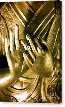 Buddhas Hands Canvas Print by Ray Laskowitz - Printscapes