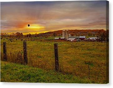 Buffalo Farm Sunset Canvas Print by Susan Candelario