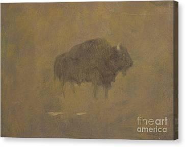 Buffalo In A Sandstorm Canvas Print by Albert Bierstadt