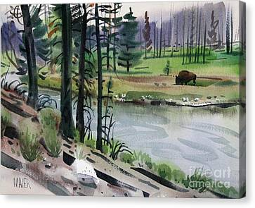 Buffalo In Yellowstone Canvas Print by Donald Maier