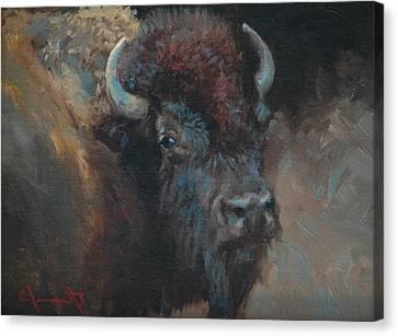 Buffalo Portrait Canvas Print by Jim Clements