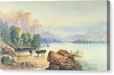 Buffalo Watering Canvas Print by Thomas Moran