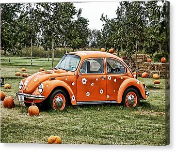 Bugs In The Patch Again Canvas Print by Scott  Wyatt