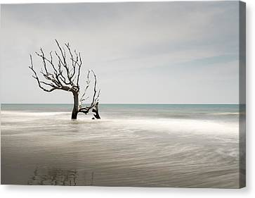 Bulls Island C-iv Canvas Print by Ivo Kerssemakers