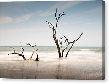 Bulls Island C-v Canvas Print by Ivo Kerssemakers