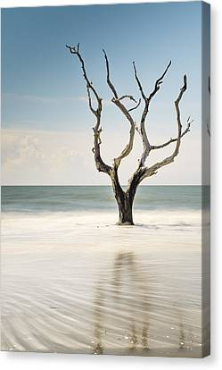 Bulls Island C-xii Canvas Print by Ivo Kerssemakers